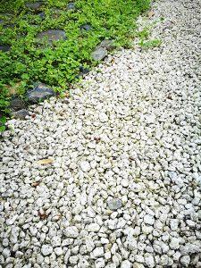 白砂利の写真